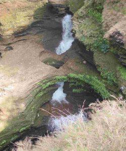 Davis Falls View