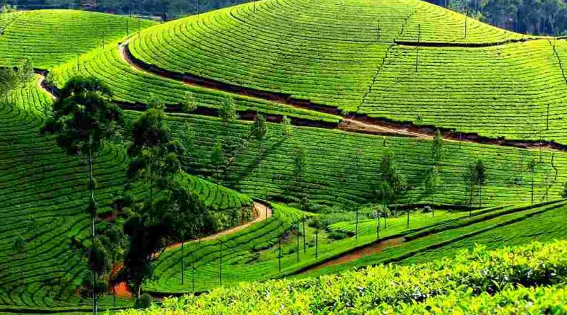 Hill Station In India