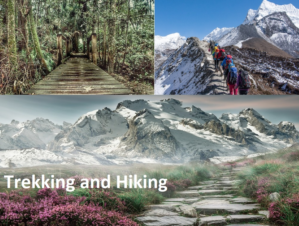 Trekking Vs Hiking