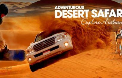 Dubai Desert Safari Trip