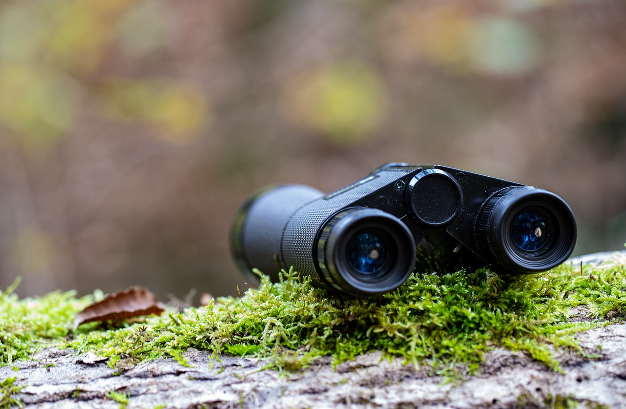 Hunting Binoculars in Forest
