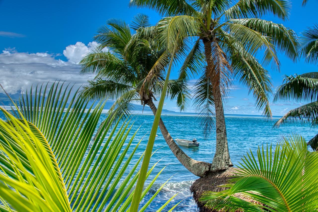 Tahiti sea and palm trees