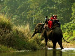Chitwan National Park Nepal Travel